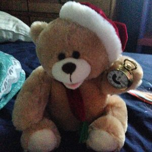 Calli the advent bear sings Christmas carols at Maggie when she accuses her of lying about the date.