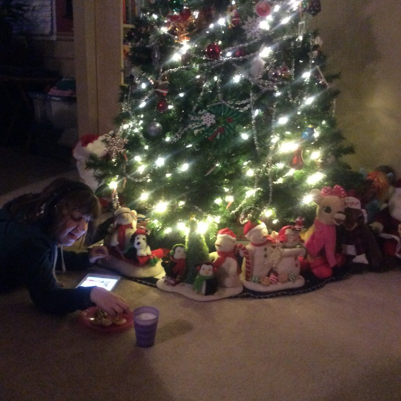 Maggie was excited to put out milk and cookies for Santa. 9 days early.